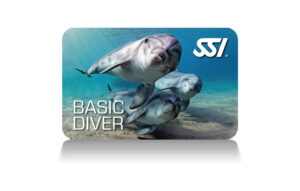 Basic Diver SSI